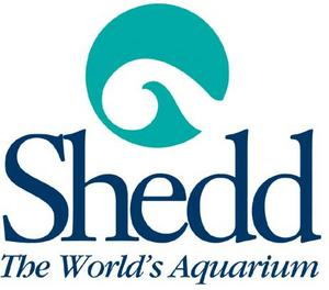 Click to schedule a trip to the Shedd Aquarium