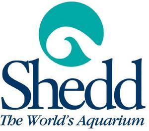 Click to schedule a trip to the Shedd Aquarium